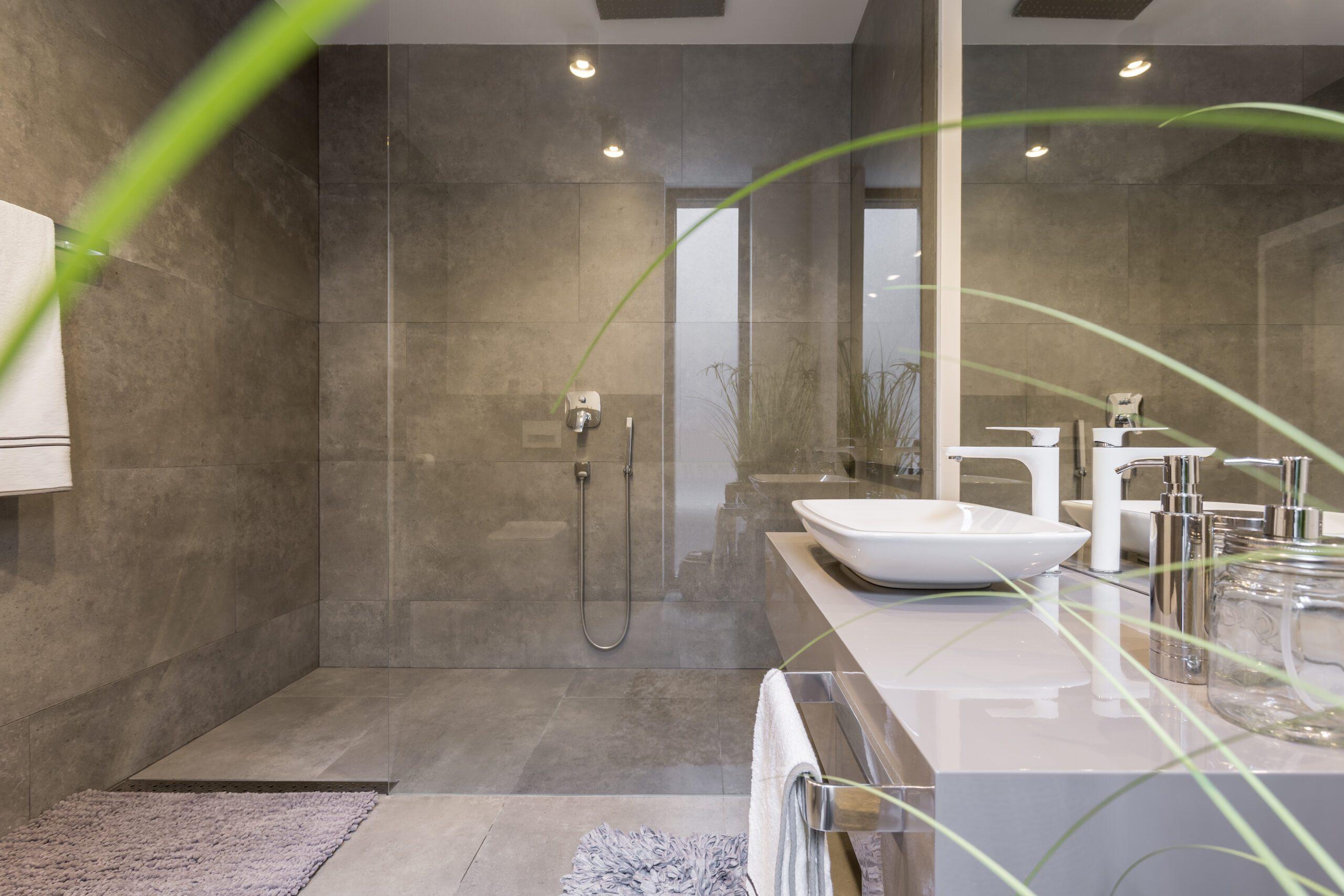 The Showdown Walk-in Tub Vs. Walk-in Shower